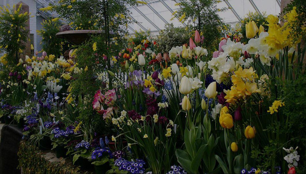 https://www.coaltrailgreenhouse.ca/wp-content/uploads/2020/04/beautiful-greenhouse-1.jpg